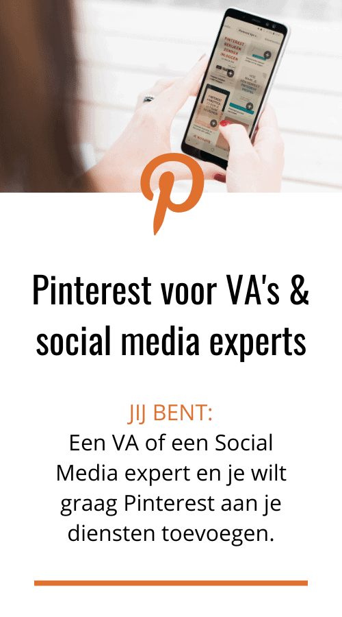 Pinterest marketing training ebook online cursus voor online marketeers, va's en social media managers